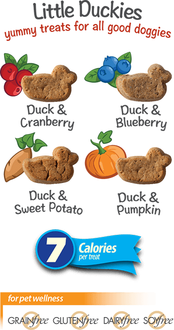 Chewzzies | Chewy Healthy Low Calorie Treats