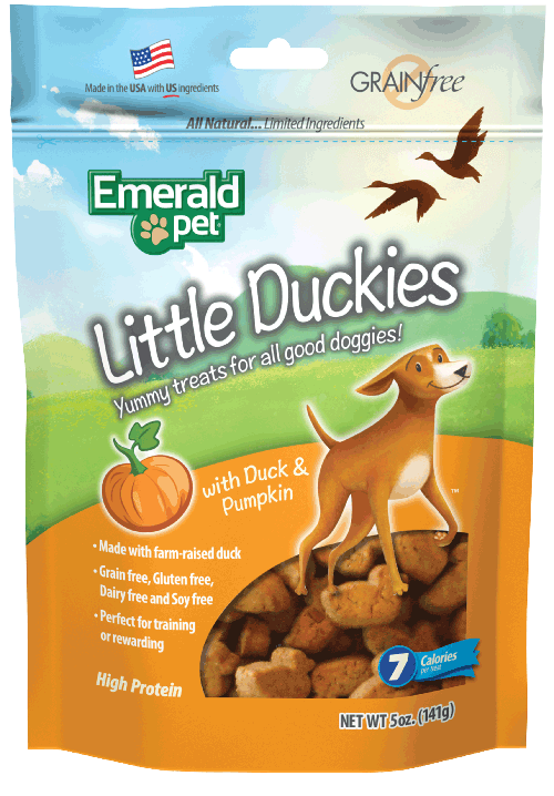 Little Duckies | Duck & Pumpkin