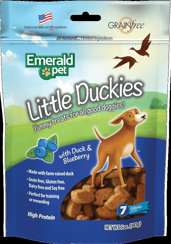 Little Duckies | Duck & Pumpkin