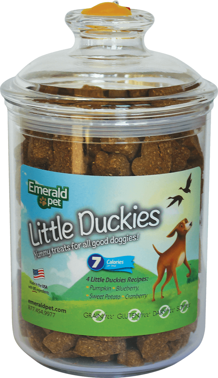 Little Duckies Treat Jar