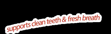 Feline Dental Stixx - Clean teeth & fresh breath