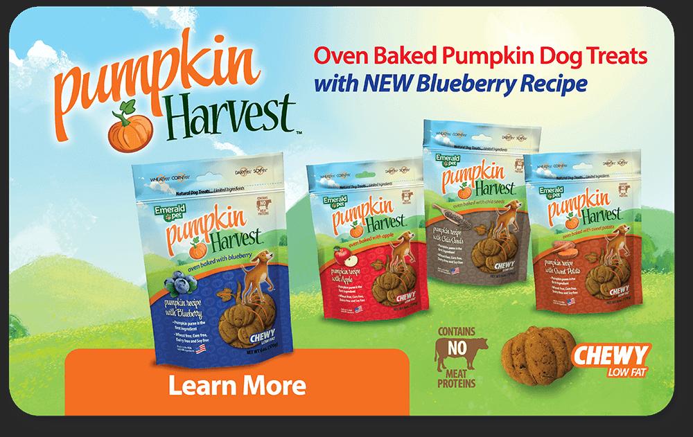 Pumpkin Harvest Oven Baked Pumpkin Dog Treats