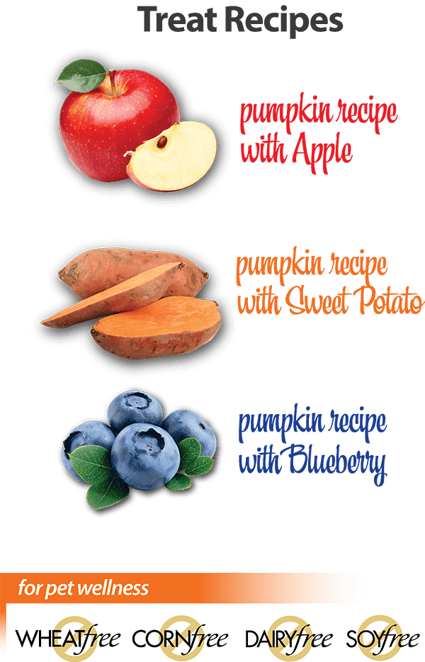 Contains NO meat proteins, chwy, low fat. Treat Recipes: pumpkin recipe with apple, pumpkin recipe with sweet potato, pumpkin recipe with blueberry