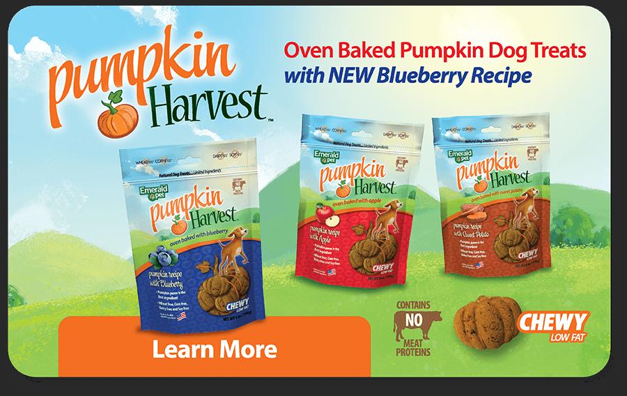 Pumpkin Harvest - Oven Baked Pumpkin Dog Treats - Learn More